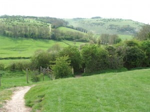 South Downs Way above Saddlescombe Farm